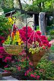 container gardening ideas hanging flower basket care