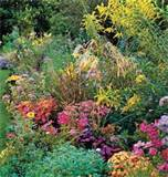 late summer garden ideas myhomeideas com