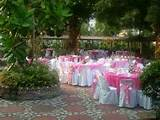 pictures garden wedding party outdoor wedding reception ideas