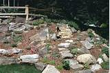 serenity in the garden a rock garden to celebrate spring and a