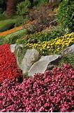 rock garden designs a practical guide