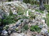 rock garden ideas alpine garden pictures