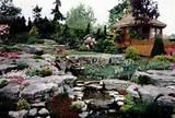 rock garden 320 216 jpg