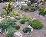 Landscape Design Ideas Rock Garden Rock Garden Design Ideas
