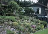 tlc home traditional rock and alpine garden ideas