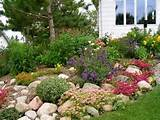 rock garden landscaping landscape ideas and pictures