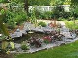 Home Designs: New River Rock Garden Designs
