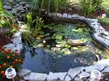 of most of the rock landscaping ideas pond or river rock landscaping ...