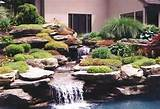 You can combine rock gardens designs with vegetation and running water ...