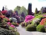Landscape designs - landscape designing plans - rock and flower garden ...