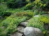 rock garden | Home Landscaping Ideas