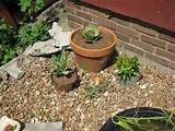 Container Rock Garden - Garden Designs - Decorating Ideas - HGTV Rate ...