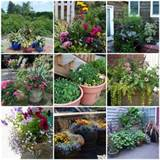 ideas container garden for very small backyard landscaping ideas