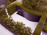 Backyard Landscaping Ideas 2012 Minimalist backyard with plants ...