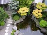 backyard landscaping ideas with flowers and bonsai plants design ...