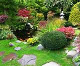 images to view them larger ideas for inexpensive landscaping plants