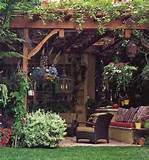 plants and flowers for decorating backyard patio