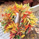 MOZZAIKWALL: Fall decorating ideas