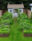 small backyard ideas small backyard garden designs