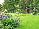 garden lawn ideas lawn and hedge care