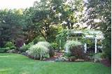 yard landscaping ideas landscape ideas and pictures