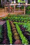 backyard vegetable garden design woodworking project plans