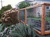 Backyard Vegetable Garden Ideas | Woodworking Project Plans