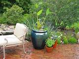 Patio decorating ideas aquatic plants Patio Decorating Ideas, 4 Rules