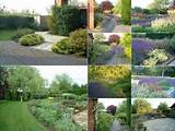 plants in deep borders or neatly bordering a patio planting plans