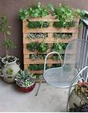 Patio Garden Ideas | The New Home Ec