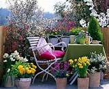 Spring Inspiration: Patio garden designs for apartment and backyard ...