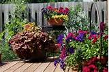 Flower Container Garden Patio Ideas | Patio Design Ideas