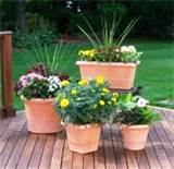 Patio-Containers