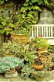 Patio Garden Photos, Design, Ideas, Remodel, and Decor - Lonny