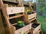 Vegetable Garden Container Container Vegetable Gardening Ideas