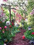 garden flowers patio outdoor decorating picture patio design ideas