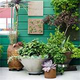 garden ideas for the city dweller plant on wheels