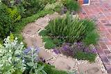 herb garden circular path patio plant flower stock photography