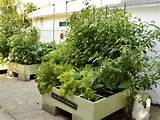 Square Foot Patio Gardens - Best Patio Design Ideas Gallery