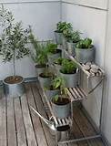 ... patio garden. I need to start planning my fall veggie/herb garden asap