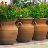 put a small table and place a container plant on