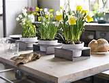 house decorating ideas spring decorations with flowers and color to
