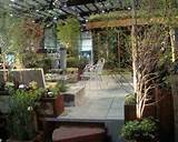 roof garden ideas design decoration homedesignxtreme com