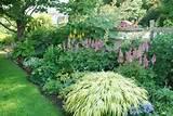 Shade Garden Plans