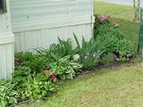 small compact cottage garden ideas please - Cottage Garden Forum ...