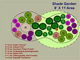 ... type of shade you have before choosing plants for your shade garden