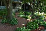 home shade garden with brick walkway hostas large trees house