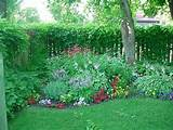 hosta shade gardens provide peace and tranquility perennials
