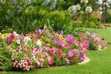 life is a garden colours in every shade fresh colour ideas