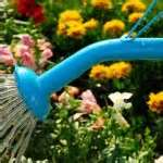Eco-friendly Flower Garden Ideas